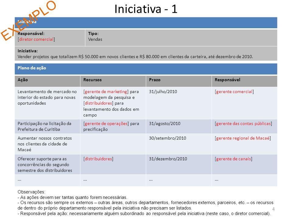 Iniciativa - 1 EXEMPLO Iniciativa Responsável: [diretor comercial]